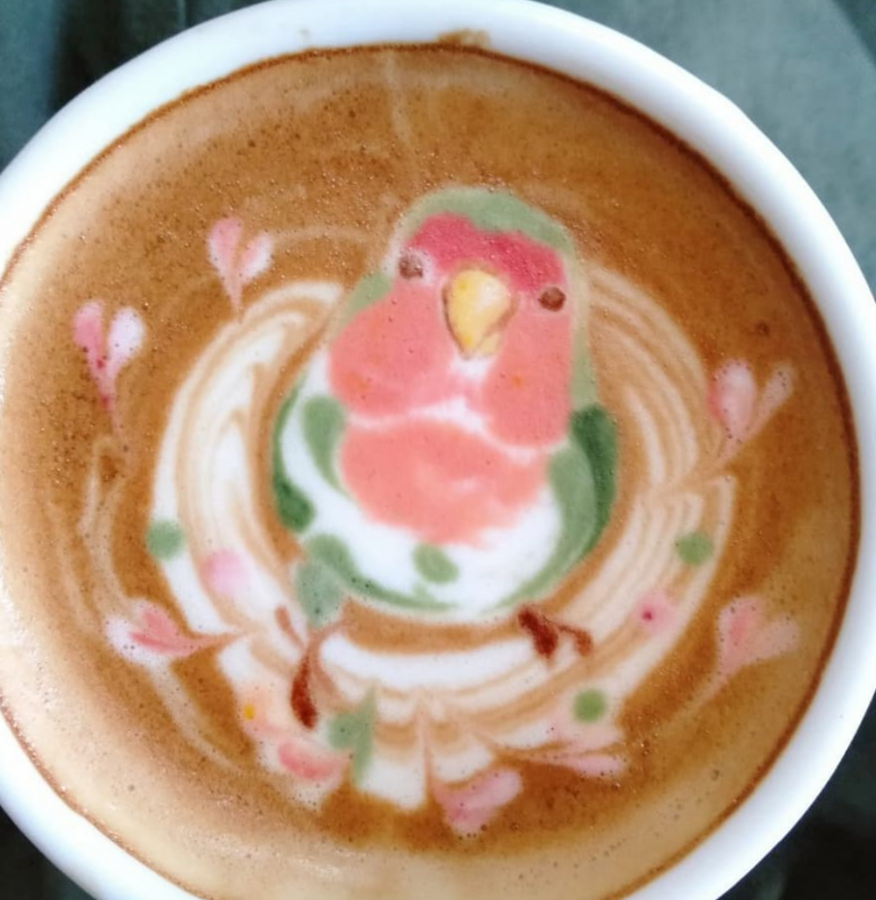 pássaro no café 7