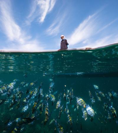 Omã: o país que tem a nos ensinar sobre a pesca sustentável
