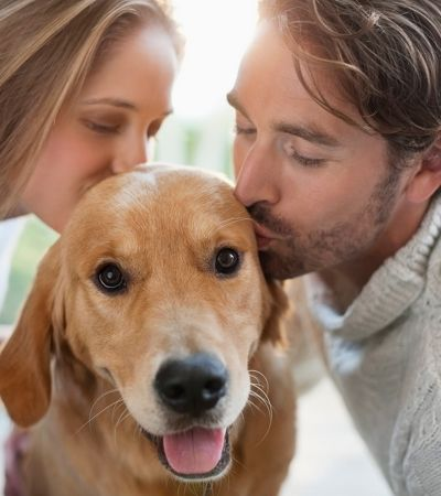 Donos de cachorros dão mais beijos em pets que em seus parceiros