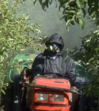 Ministra diz que faltava 'boa vontade' da Anvisa para liberar agrotóxicos