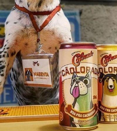 Cãolorado, a cerveja (sem álcool, claro) criada pela Colorado só para cachorros
