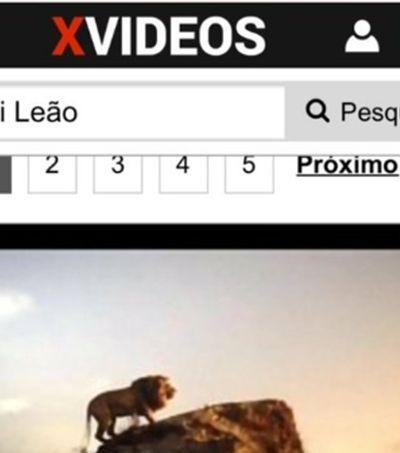 Sim, Xvideos precisou tirar do ar cópia pirata de 'O Rei Leão'