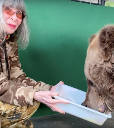 Morre Rowena, a ursa que inspirou o livro de Rita Lee