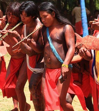 Quem são os wajãpi, povo indígena ameaçado pelo garimpo e pelas mineradoras