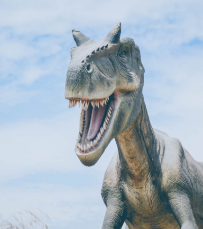 Segundo estudo, na pré-história, os crocodilos vegetarianos eram maioria