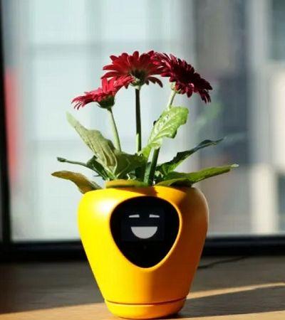 Este vaso inteligente transforma sua plantinha em um Tamagotchi
