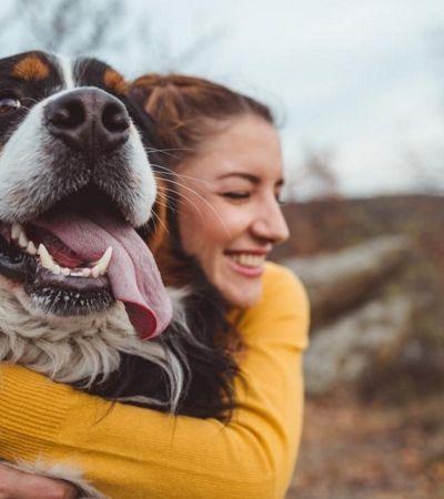 Quer adotar um cachorro? A explicação pode estar no seu DNA