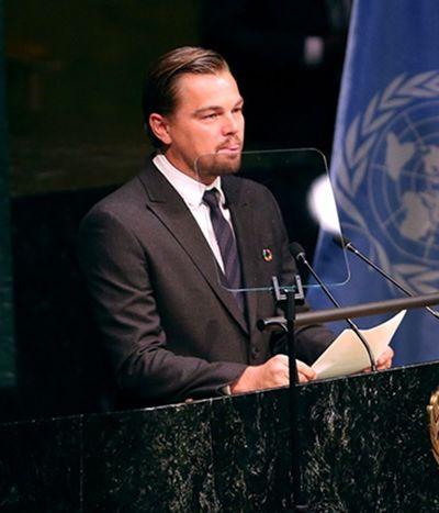Leonardo DiCaprio faz doação milionária para a proteção da Amazônia