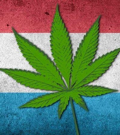 Luxemburgo vai se tornar o 1º país europeu a legalizar totalmente a maconha