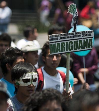Suprema Corte do México ordena que ministério regulamente maconha medicinal