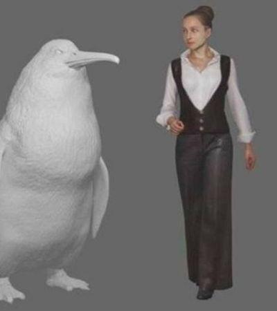 Fóssil de Pinguim gigante de 80 quilos é encontrado na Nova Zelândia