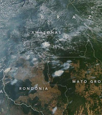 Incêndios na Amazônia têm 'assinatura do desmatamento', aponta NASA