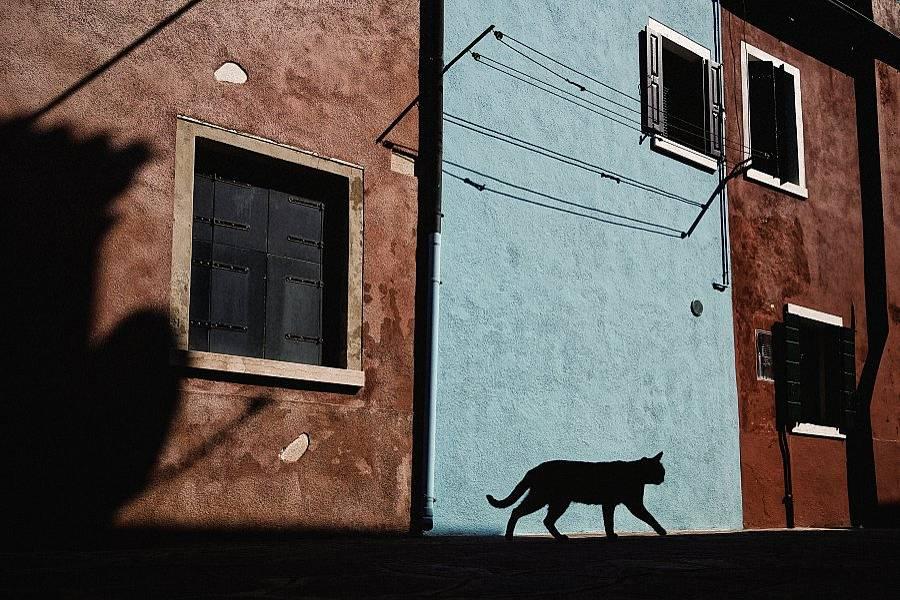 burano itália 8
