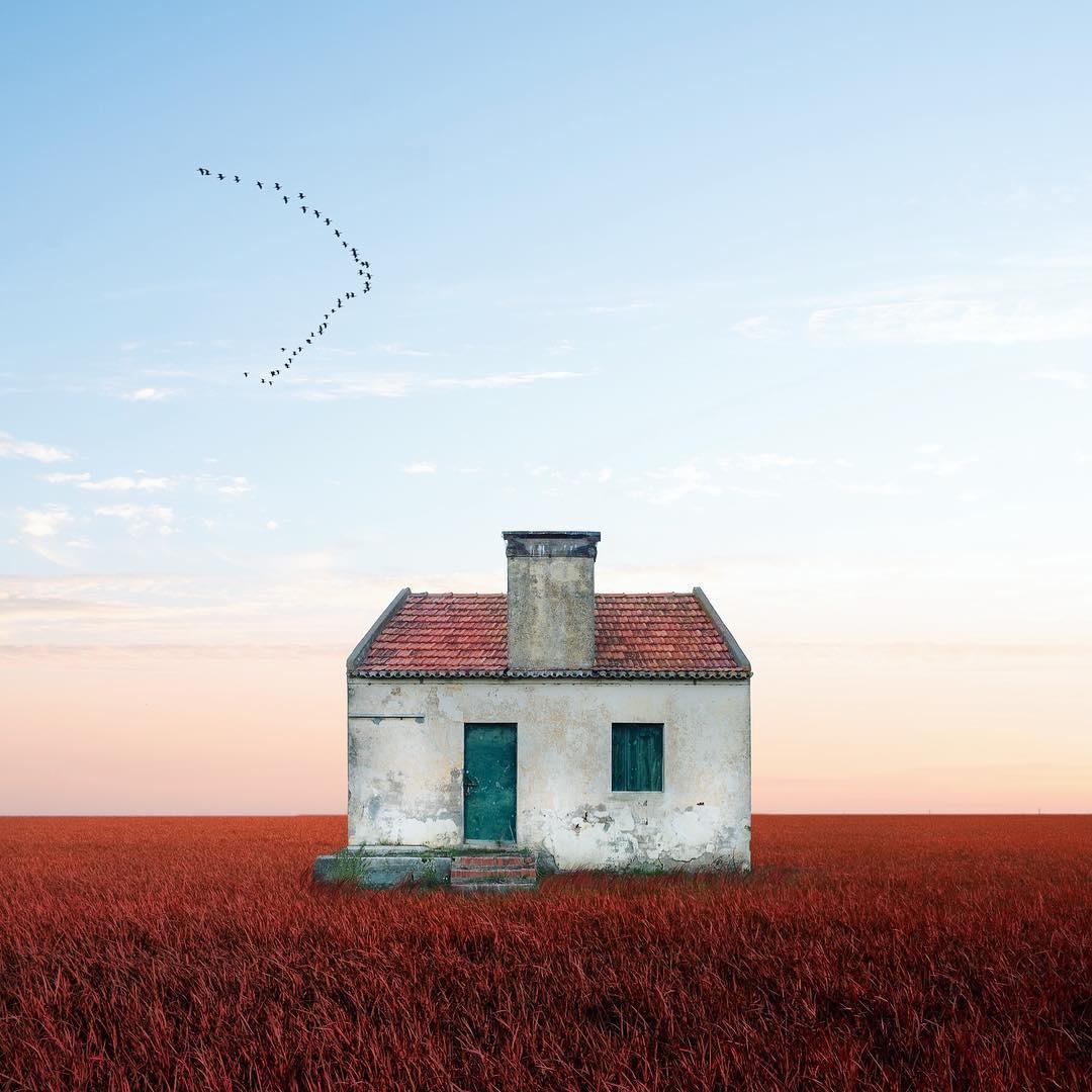 casas solitárias 4