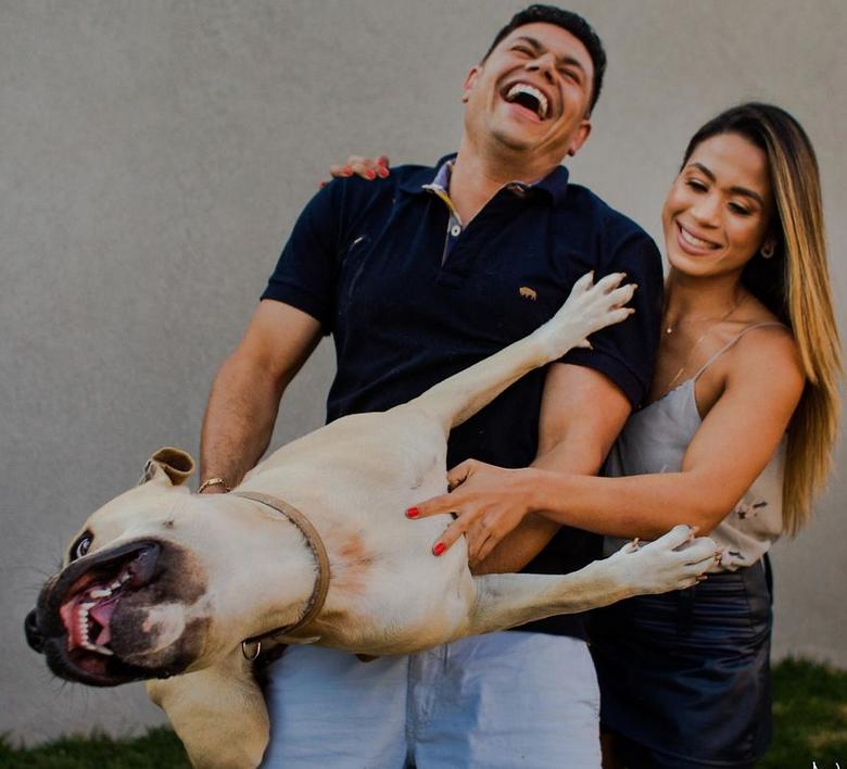 ensaio casamento cachorro 2