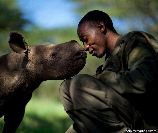 Homem faz uma cara de ternura com o rosto encostado ao de um filhote de hipopótamo