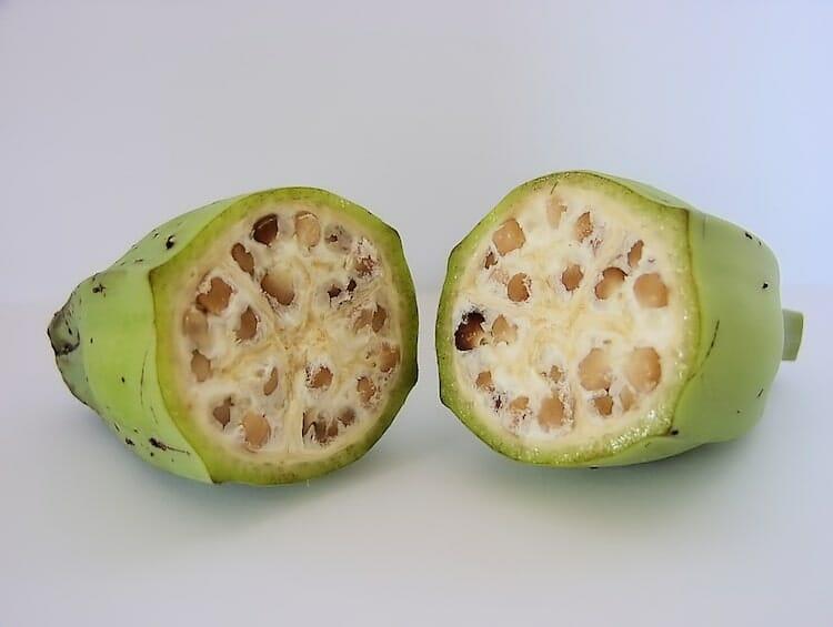 frutas de antigamente 3