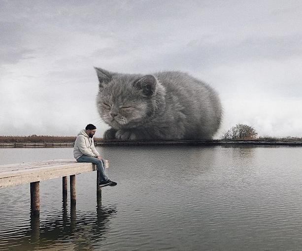 gato gigante ponte