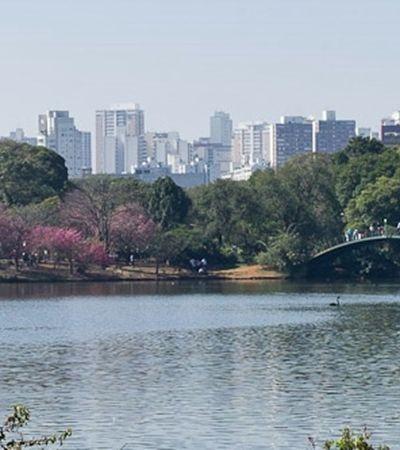 São Paulo proíbe fumo de cigarro e narguilê em parques municipais