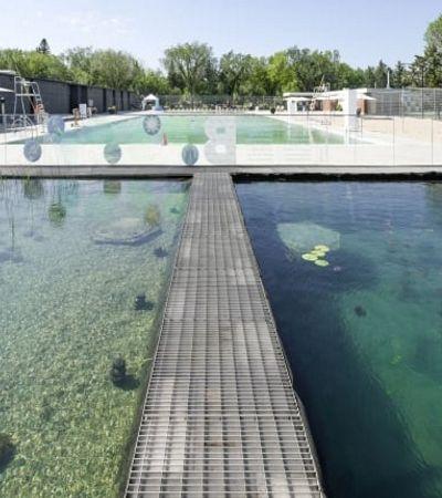 Conheça a primeira piscina pública do mundo tratada por plantas filtrantes
