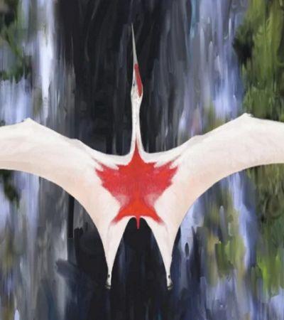 Um dos maiores animais voadores da pré-história é descoberto no Canadá