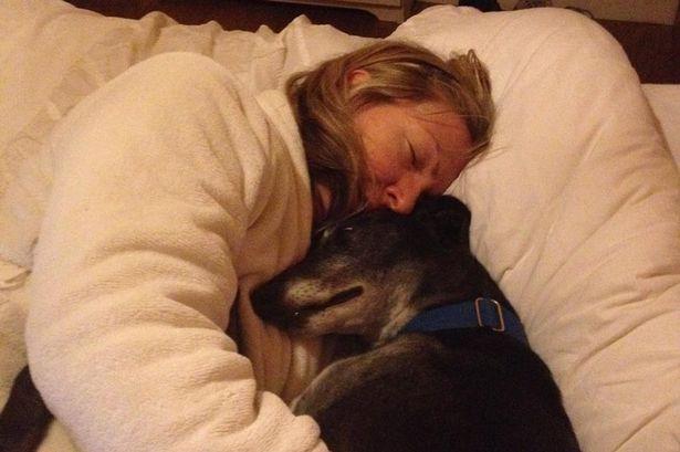 cachorro descobre câncer de mama 2