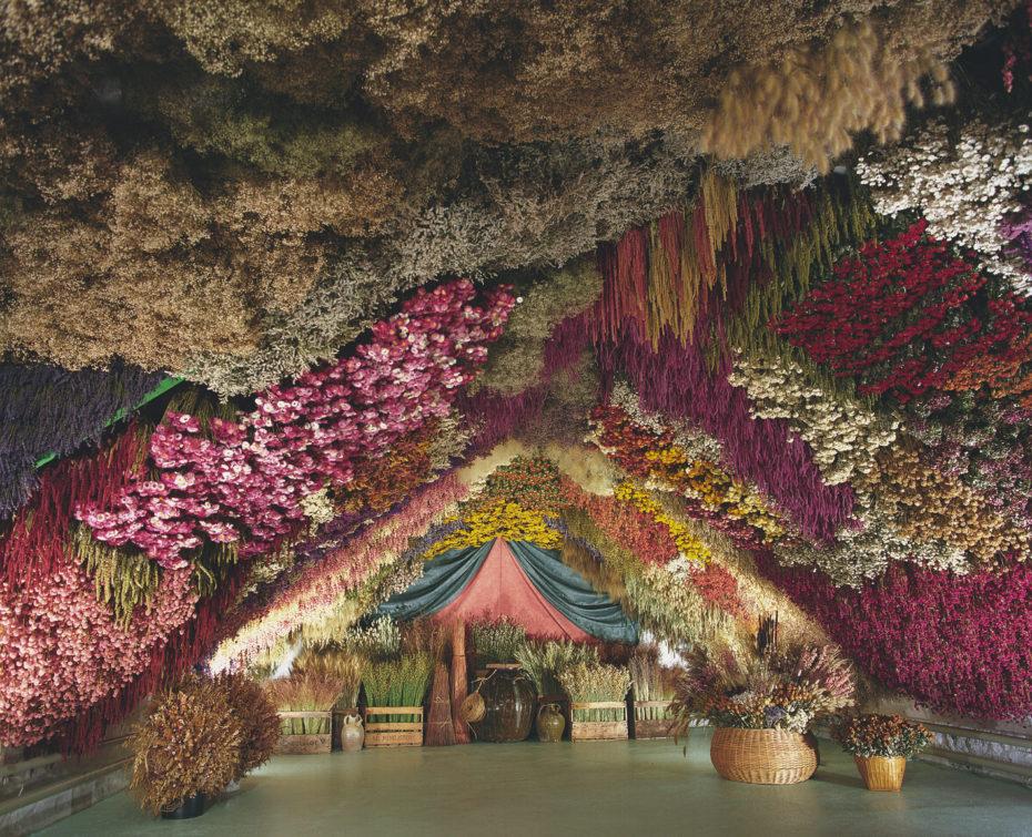 caverna de flores frança 1
