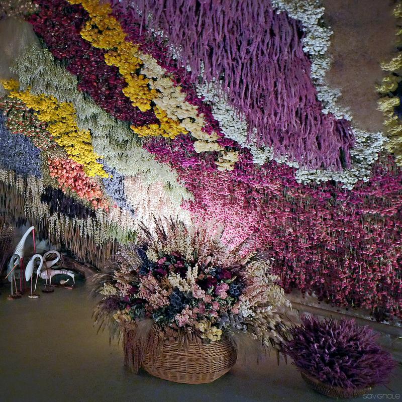 caverna de flores frança 2