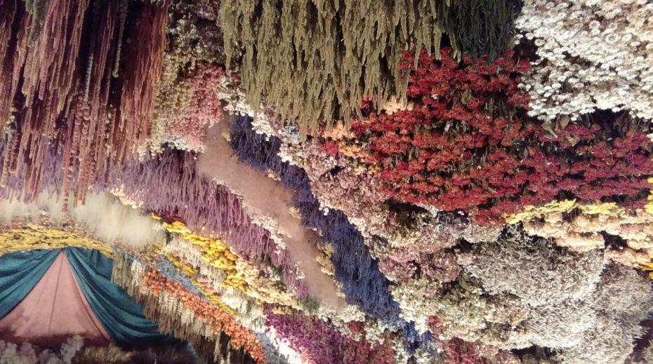 caverna de flores frança 6