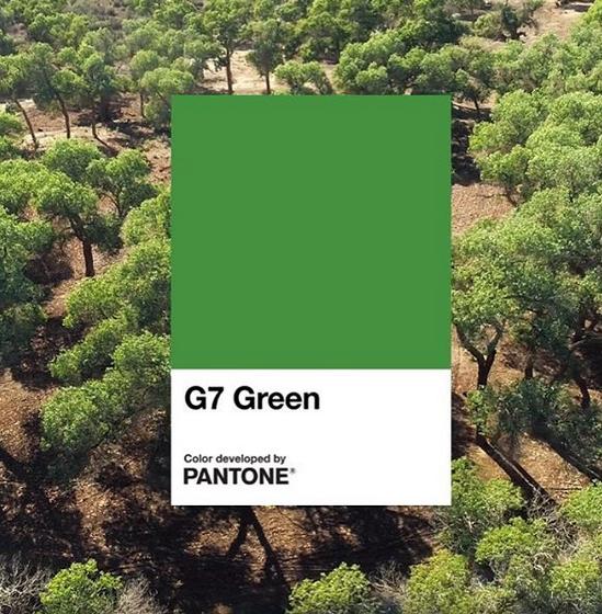 cor pantone 2020 1