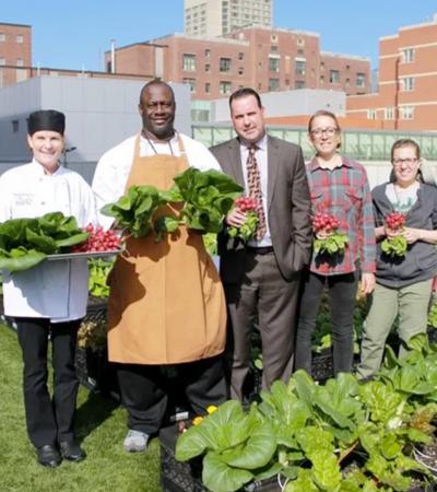 Este hospital deciciu cultivar alimentos frescos e oferecer a pacientes de baixa renda