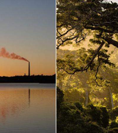Um dos lugares mais poluídos da Terra há 40 anos tem hoje o ar mais puro da região