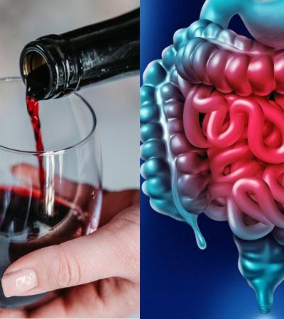 Vinho tinto pode contribuir para o bom funcionamento do intestino