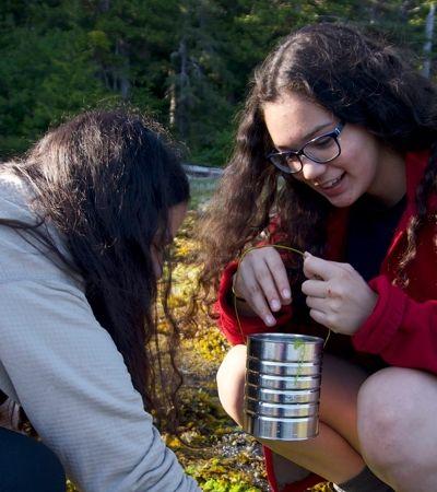 E se o seu exame de fim de ano fosse sobreviver em uma ilha remota e deserta no Alaska?
