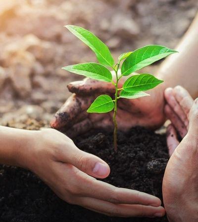 Sujar-se de terra é o mais moderno e eficaz antidepressivo de acordo com este estudo