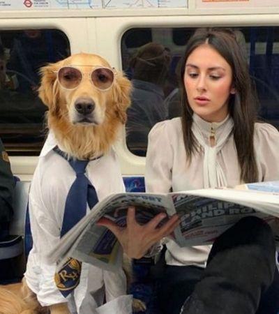 Série fotográfica registra a maravilhosa conexão desta garota com sua cachorra