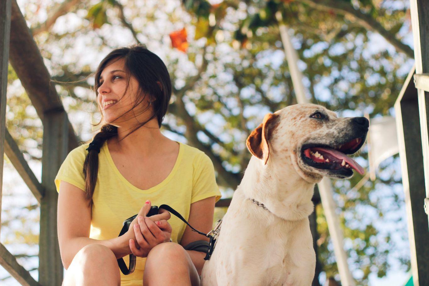 cachorro faz bem pra saúde 5