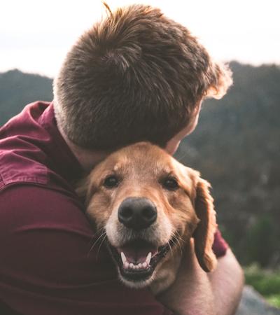 Ter um cachorro pode te ajudar a viver mais, aponta estudo