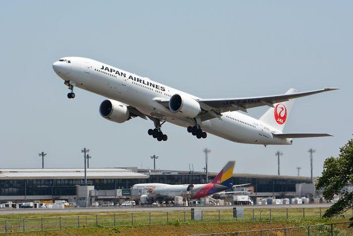 companhia aérea longe de bebês 1