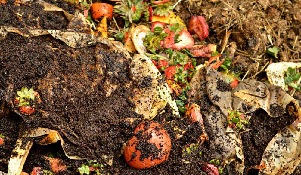 compostagem 1