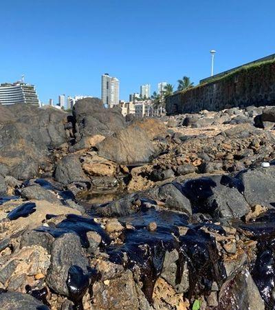Mancha de óleo atinge praia do Farol da Barra, em Salvador; veja imagens