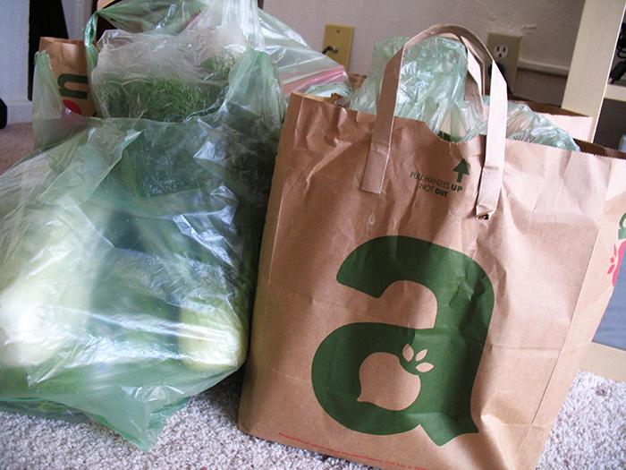 origem dos sacos plásticos 3