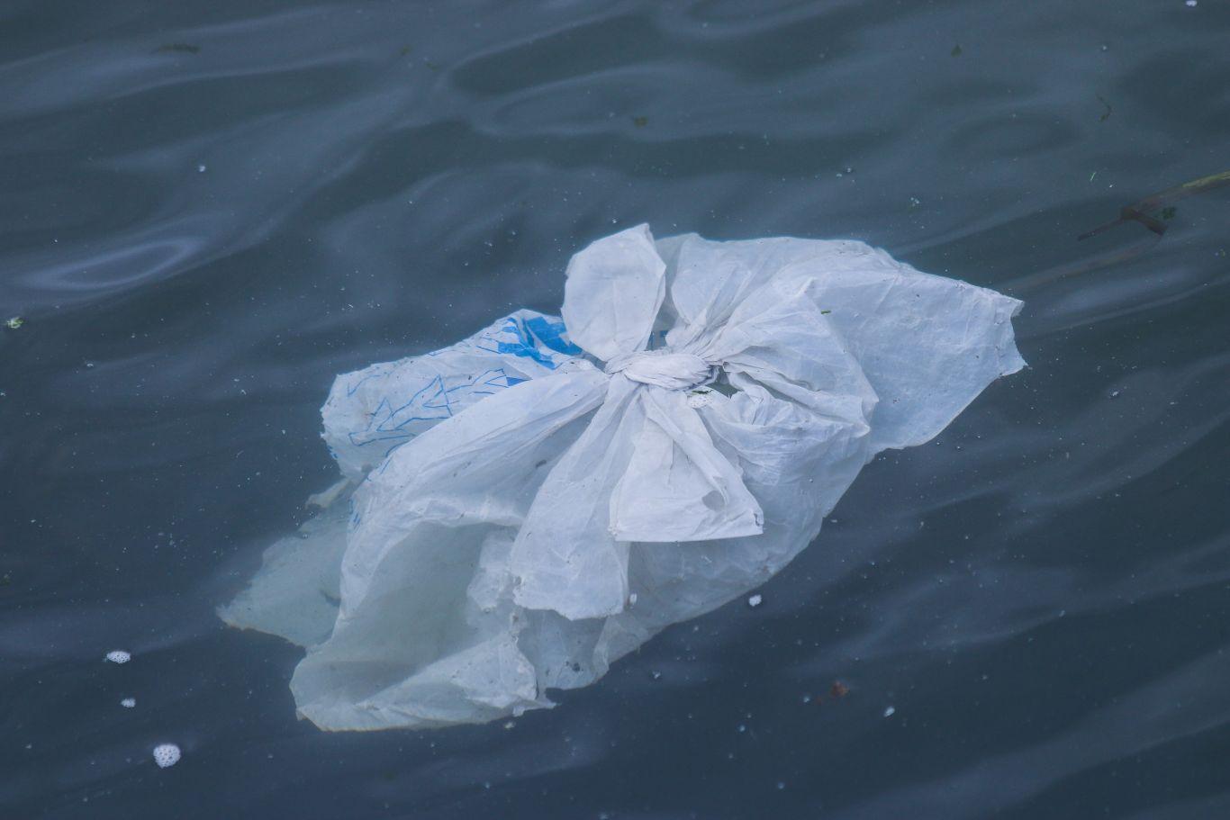 origem dos sacos plásticos 6