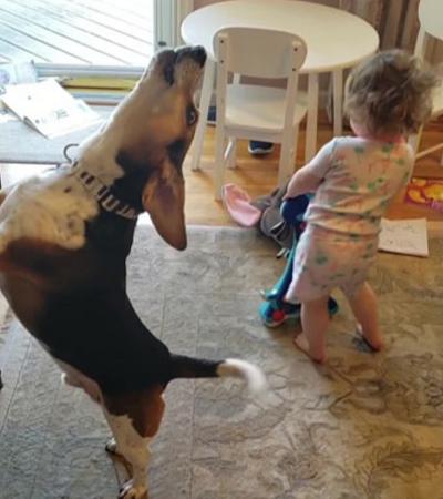 Pai capta sem querer vídeo de sua filha dançando enquanto seu cão toca piano