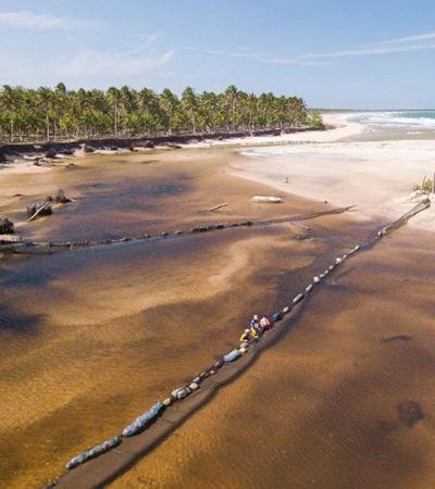 Voluntários criam tecnologia para proteger manguezais e água doce do óleo no sul da Bahia