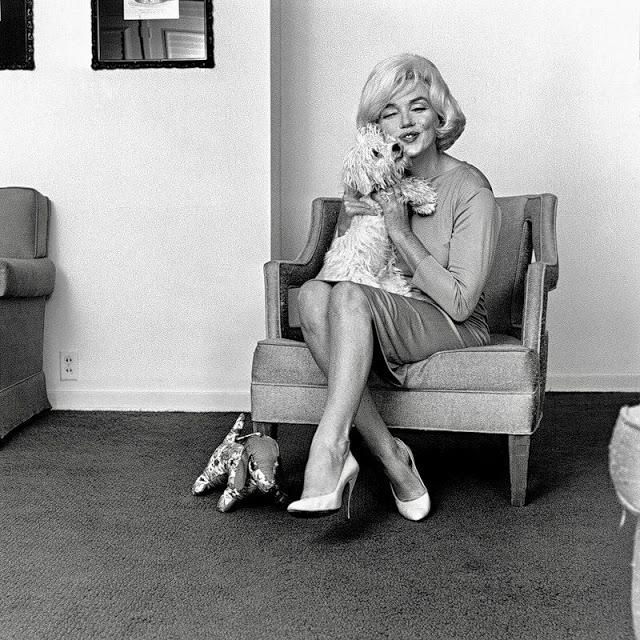 Marilyn Monroe e cachorro 1