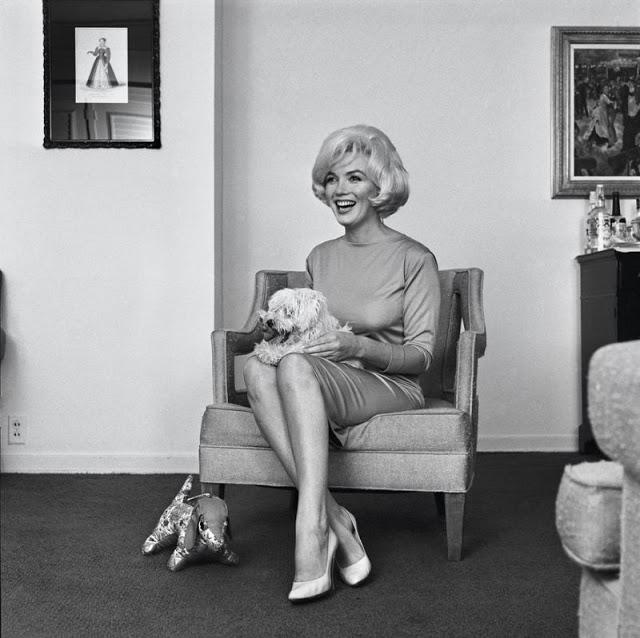 Marilyn Monroe e cachorro 2