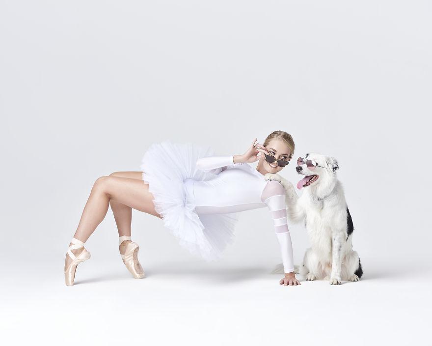 cães e dançarinos de balé 3