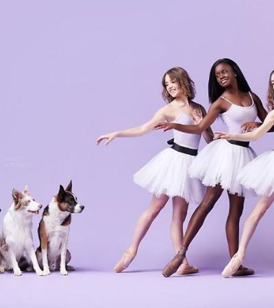 O incrível projeto fotográfico que une balé e acrobacias caninas