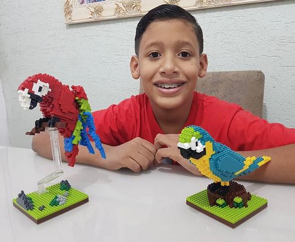 garoto autista estátua da liberdade lego 6